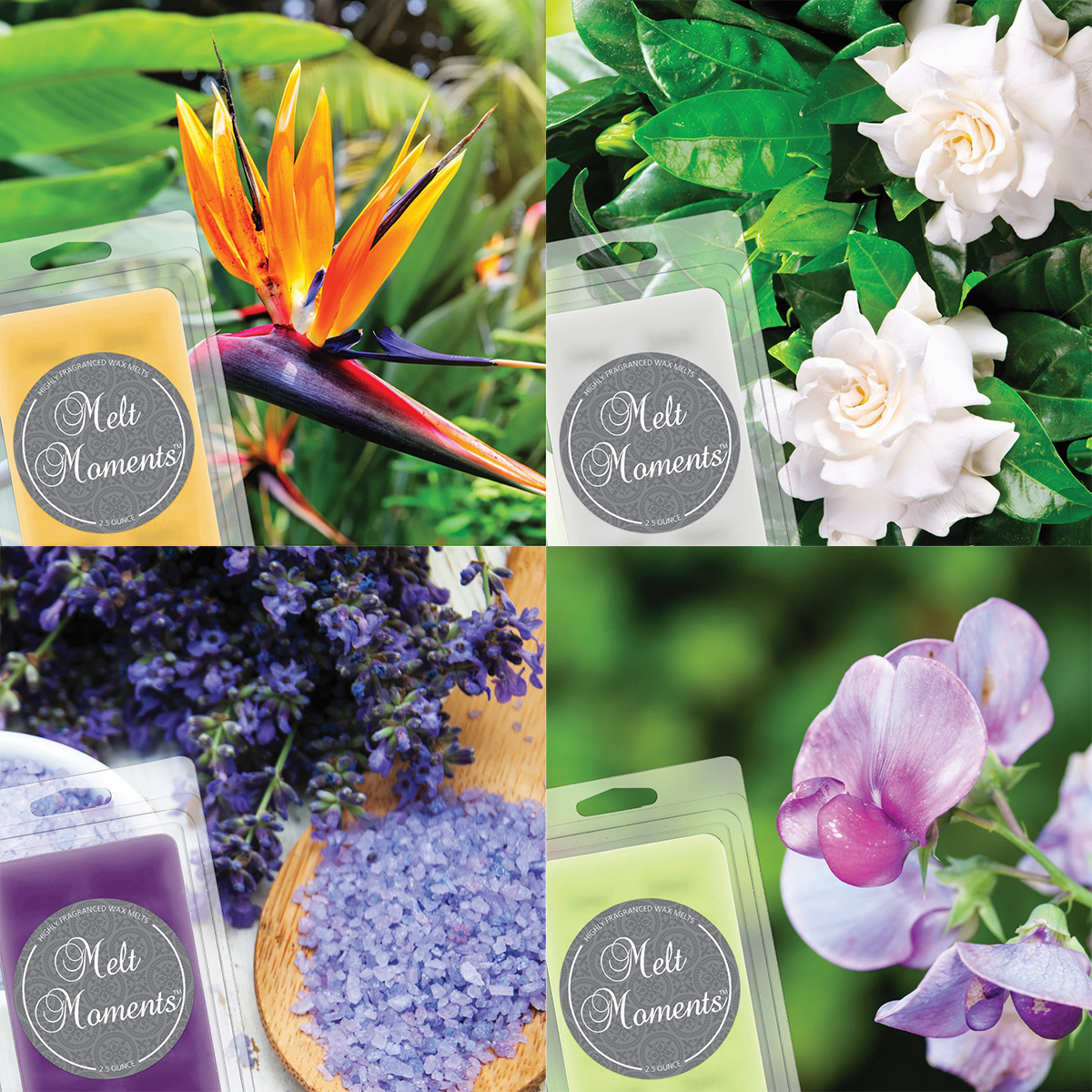 Melts - 4 Packs of Floral Fragrances (Variety Pack)