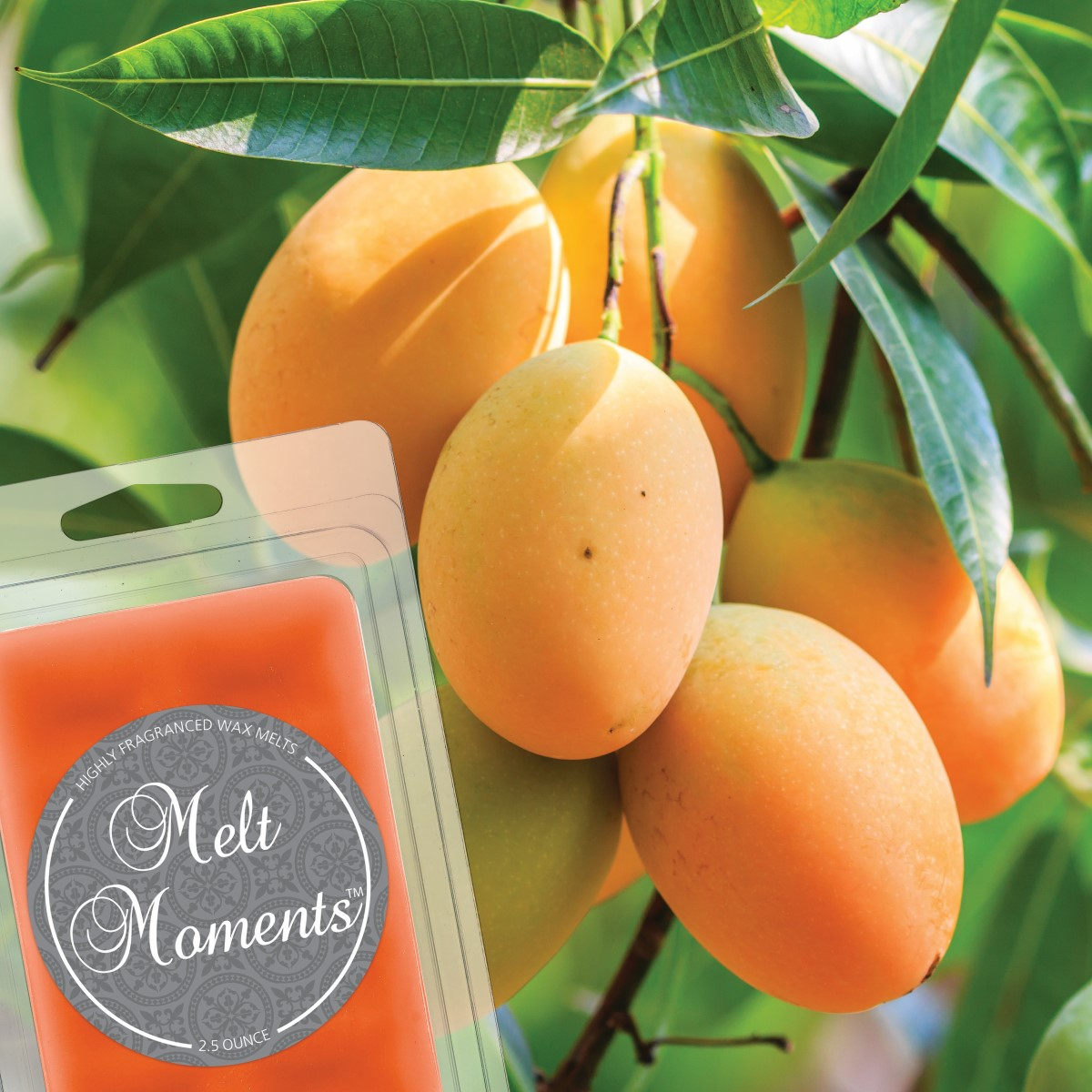 Mango Cooler Melts