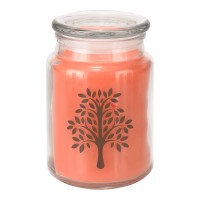 Apothecary Candle - Peach Orchard