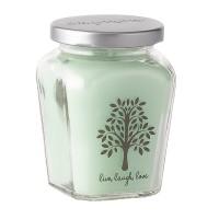 Petite Jar Candle - Cucumber Melon
