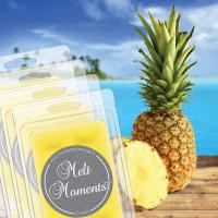 Melts - 4 Packs of Pineapple Paradise