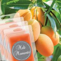Melts - 4 Packs of  Mango Cooler