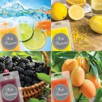 Melts - 4 Packs of Fruit Fragrances  (Variety Pack)
