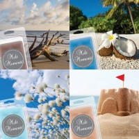Melts - 4 Packs of Clean/Beach Fragrances (Variety Pack)