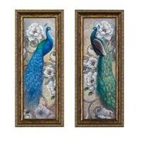 Peacock Splendor - Set of 2