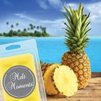 Pineapple Paradise Melts